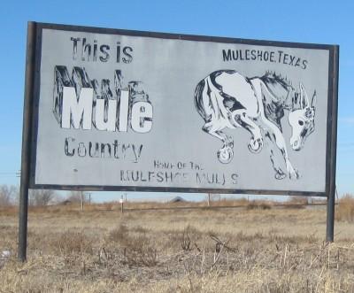 U Haul Muleshoe Tx 121009muleshoe jpg